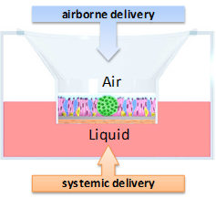 mimic-airborne-or-systemic-delivery